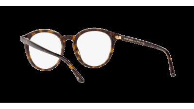 Giorgio Armani Frames Of Life Écaille AR7151 5026 49-19